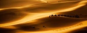 Bannière désert thérapie groupe marche